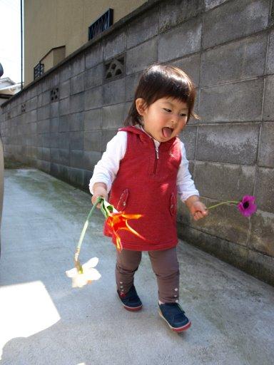 1歳7ヶ月 ご機嫌でお花を持つ