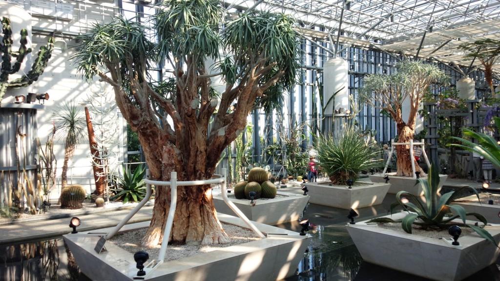 奇跡の星の植物館 淡路夢舞台